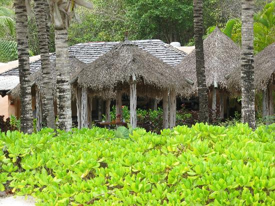 Galley Bay Resort: The Gauguin Restaurant