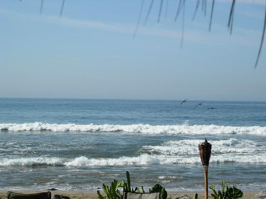 Present Moment Retreat: The sea, the beautiful sea.