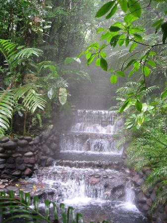 Arenal excursion--hot springs