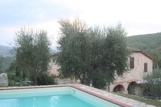 Locanda La Capannuccia: The swimming pool