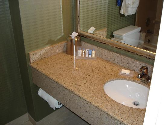 Doubletree Hotel Atlanta/North Druid Hills: Sink