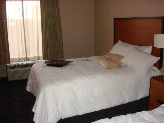 Hampton Inn and Suites Indianapolis - Fishers: The Room