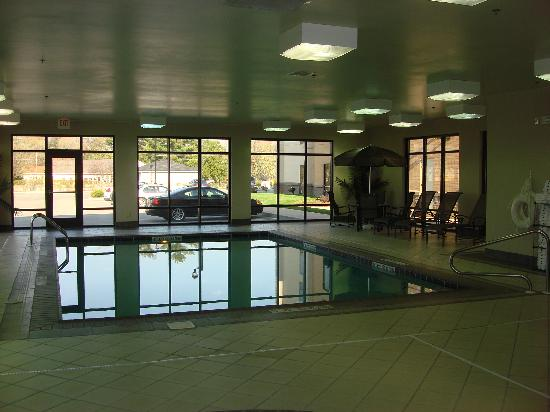 Hampton Inn and Suites Indianapolis - Fishers: Indoor Pool