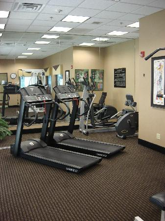 Hampton Inn and Suites Indianapolis - Fishers: Work out area