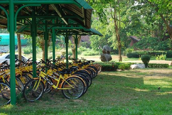 Iyara Lake Hotel & Resort: Bicycles to explore the large ground