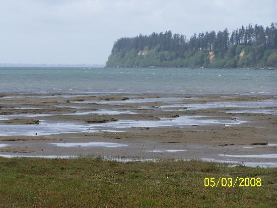 Grays Harbor, mud flats, and forested bluff in the distance