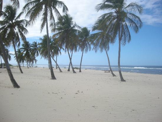 Guadeloupe: Plage de la Chapelle, Anse-Bertrand