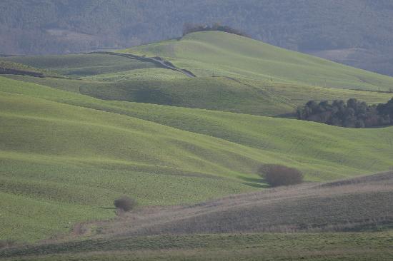 Il Castello del Poggiarello di Stigliano: typical late winter Tuscan view