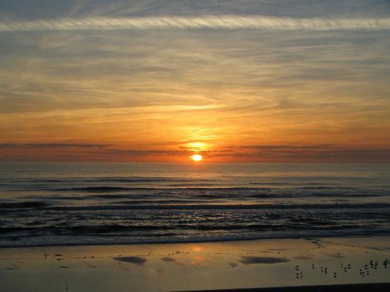 بلو جرين دايتونا سيبريز أسيند ريزورت كو: A beautiful morning at the Seabreeze