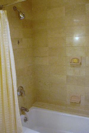 Radisson Blu Minneapolis Downtown: Shower
