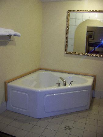 Comfort Suites South Haven: hot tub