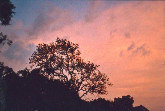 Belihuloya, Σρι Λάνκα: sunset
