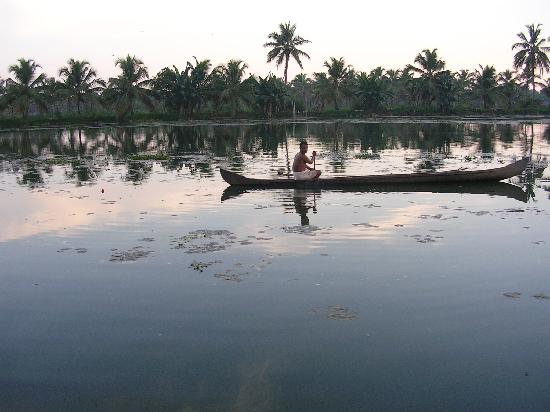 Maria Heritage Homes and Spa: Boating in backwaters