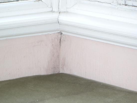 Plas Ifan Hotel & Restaurant: dampness in bay window
