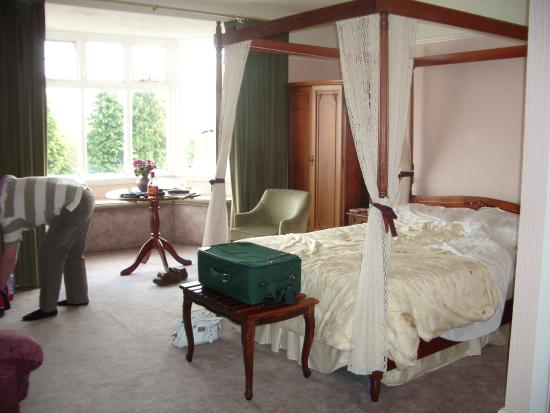 Plas Ifan Hotel & Restaurant: general view of room 1