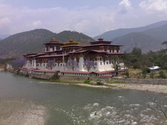 Kichu Resort Wangduephodrang : Punakha Zong
