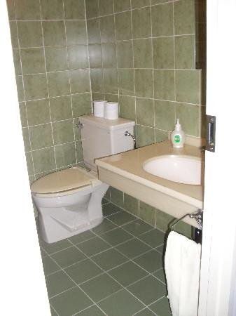 Hotel Natural Garden Nikko: roomy bath