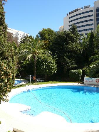 Jardines Del Mar Apartments: THe pool area