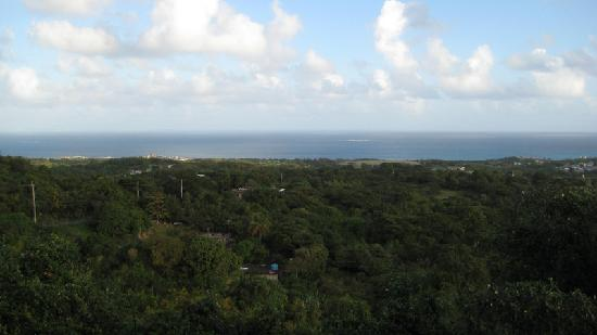 Vieques Villa Gallega A-16-N: The perfect morning view.