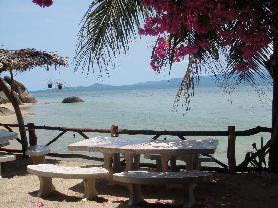 Harmony Beach Resort: looking out from yjr restaurant