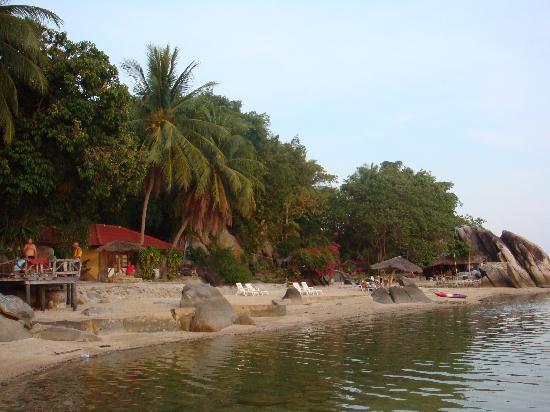 Harmony Beach Resort: View of the beach