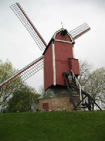 Belgien: Windmill - Bruges