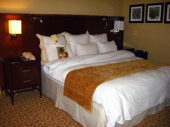 Albuquerque Marriott: The Bed