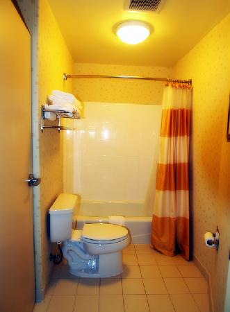 SpringHill Suites Dallas DFW Airport North/Grapevine: Bathroom