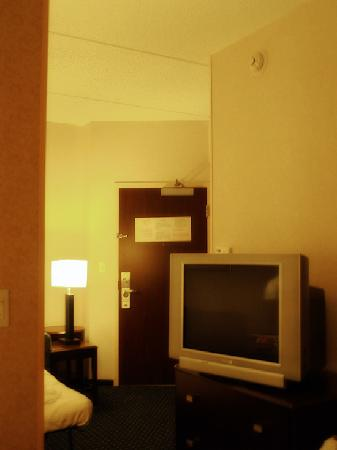 SpringHill Suites Dallas DFW Airport North/Grapevine: Television