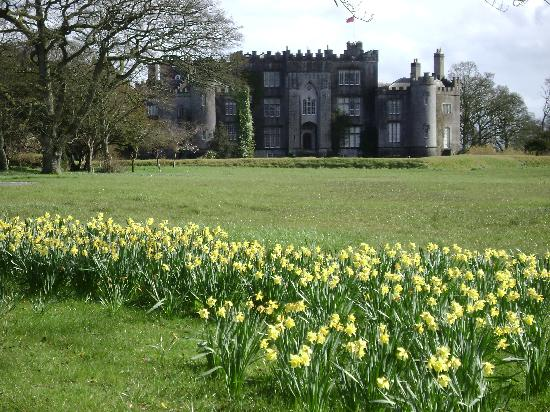 Walcot Bed and Breakfast: Birr Castle across the street