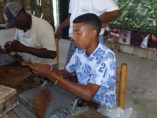 Paradise Island & The Mangroves (Cayo Arena): father/son cigar rolling team