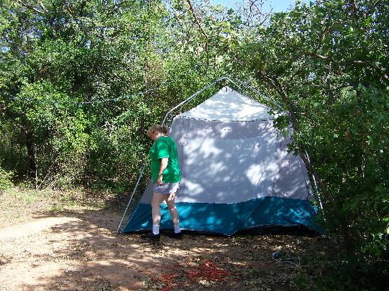 Lake Mineral Wells State Park Campground: Lots of trees at the Live Oak camp grounds