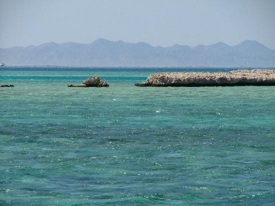 Le Pacha Resort: Coral Reef