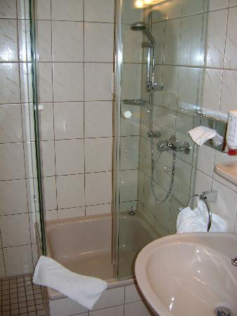 Wartburg Hotel: Wartburg Guest Bathroom