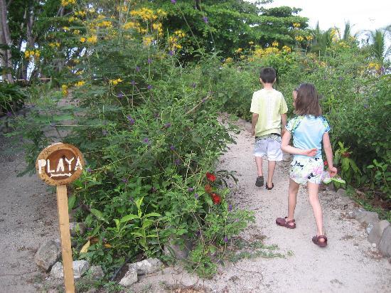 Villas Hermosas: Path leading to beach
