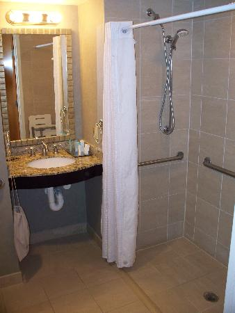 Radisson at The University of Toledo: handicapped room has a useful shower...