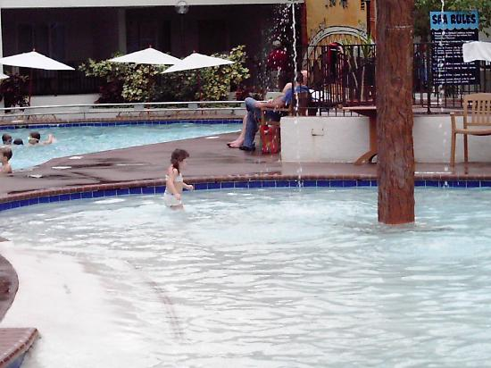 Adventureland Inn: The nice pool thats overcrowded