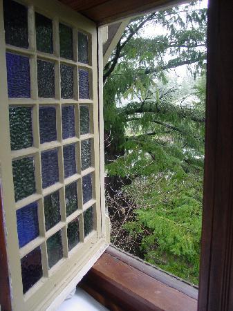 Grape Leaf Inn: Rainy day, boo
