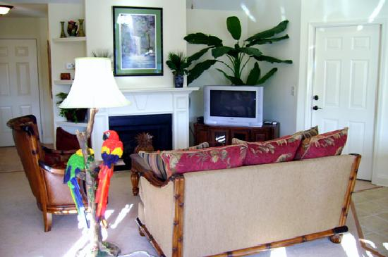 Paradise Valley Resort: Condo Suite