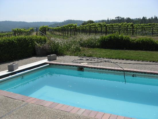 Fitzpatrick Winery and Lodge : Lap Pool next to the Vineyards...