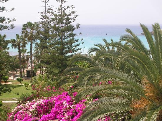 Nissi Beach Resort : vue de chambre sur mer et jardin