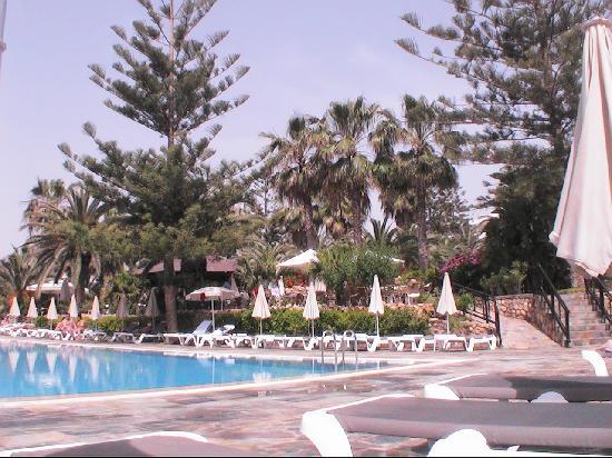 Nissi Beach Resort : piscine