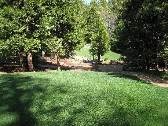 Arnold Black Bear Inn : Beautiful grounds