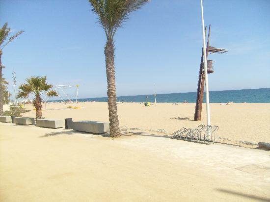 Hotel Serhs Oasis Park: calella beach