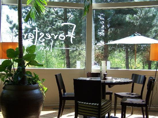 Center Parcs Sherwood Forest: the brand new foresters inn restaurant