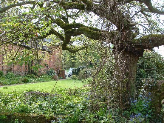 Old Country House: Garden