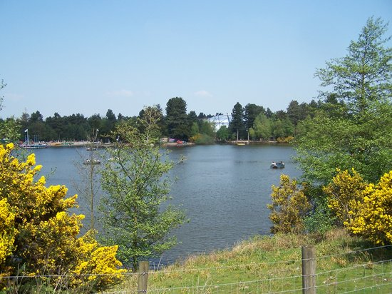 Rufford, UK: view of the lake