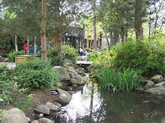 Center Parcs Sherwood Forest: the village square