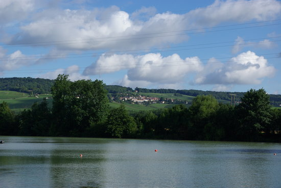 Camping Municipal d'Epernay: The view from the campsite up into the vineyards
