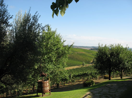 Castellina In Chianti, Italy: Vue sur les collines environnantes